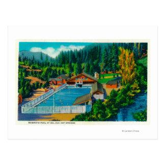 Piscine gigantesque au solénoïde Duc Hot Springs Carte Postale