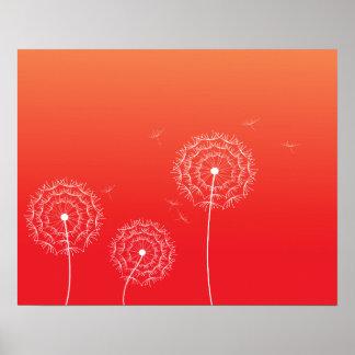 Pissenlit rouge de coucher du soleil au printemps posters