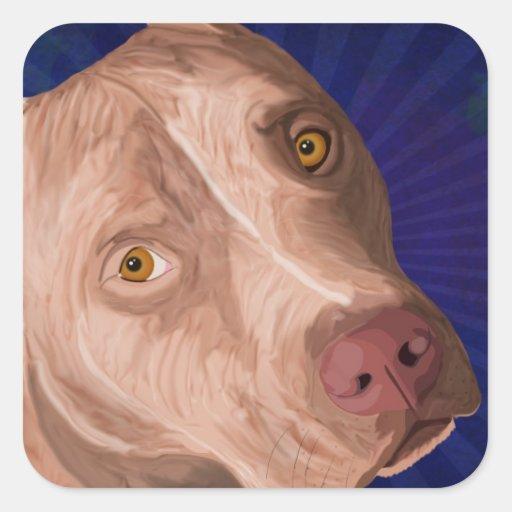 Pitbull rouge de nez avec un arrière - plan bleu sticker carré