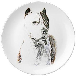 Pitbull Terrier américain Assiette En Porcelaine