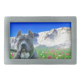 Pitbull Terrier américain bleu, crête de brochets Boucle De Ceinture Rectangulaire