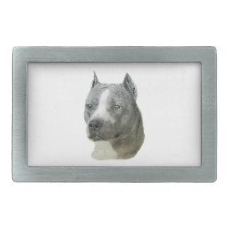 Pitbull Terrier américain Boucles De Ceinture Rectangulaires
