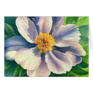 Pivoine blanche - aquarelle - carte postale 5x7
