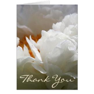 Pivoine blanche - Merci - photographie florale Carte De Vœux