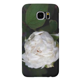 Pivoine blanche - photographie florale - affaire 1