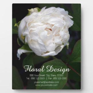 Pivoine blanche - photographie florale - plaque plaques d'affichage