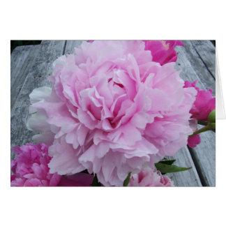 Pivoines/carte pour notes roses de pivoine cartes de vœux
