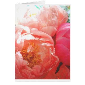Pivoines roses -- assez dans le rose ! carte de vœux
