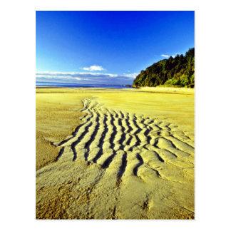 Plage à marée basse, parc national d'Abel Tasman Carte Postale