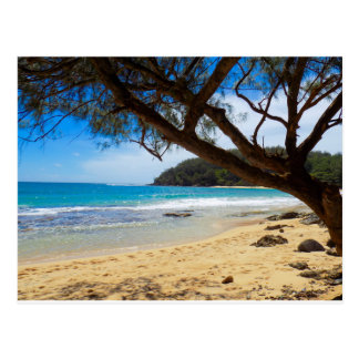 Plage dans Kauai Carte Postale