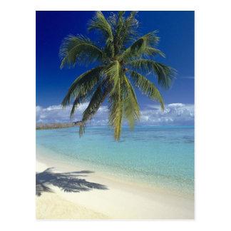 Plage de Matira sur l île de Bora Bora société Carte Postale
