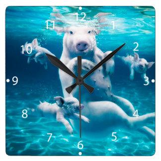 Plage de porc - porcs de natation - porc drôle horloge carrée