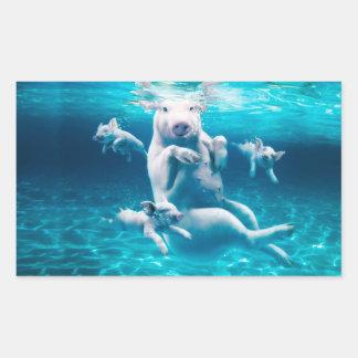 Plage de porc - porcs de natation - porc drôle sticker rectangulaire