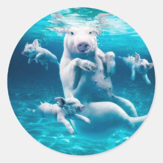 Plage de porc - porcs de natation - porc drôle sticker rond