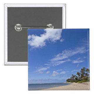 Plage hawaïenne avec des palmiers badge