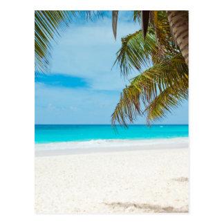 Plage tropicale de paradis cartes postales