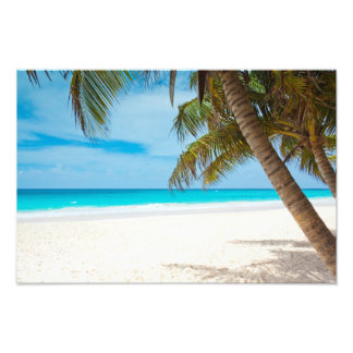 Plage tropicale de paradis photographies d'art