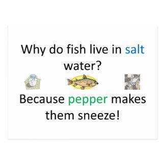 Plaisanterie de sel et de poivre carte postale