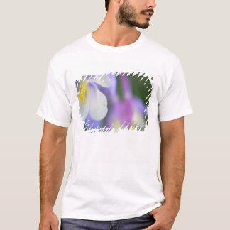 Plan rapproché de fleur du Colorado Columbine T-shirt