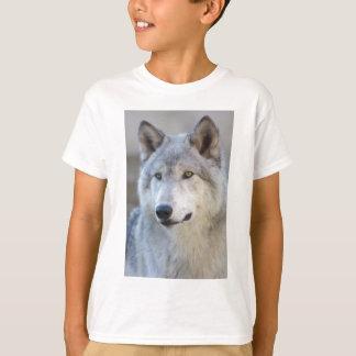 Plan rapproché de loup gris t-shirt