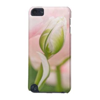 Plan rapproché de tulipe et de bourgeon coque iPod touch 5G
