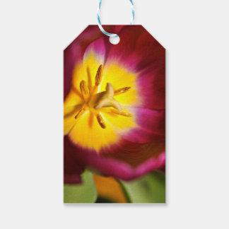 Plan rapproché de tulipe étiquettes-cadeau