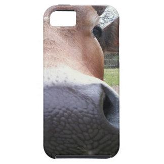 Plan rapproché de vache étuis iPhone 5