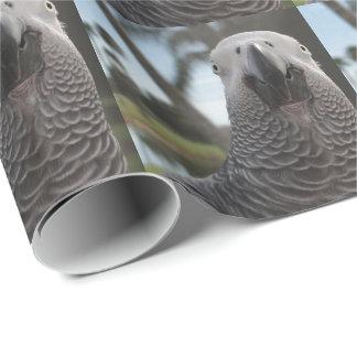 Plan rapproché de visage de perroquet de gris papiers cadeaux noël
