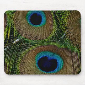 Plan rapproché des plumes de paon tapis de souris