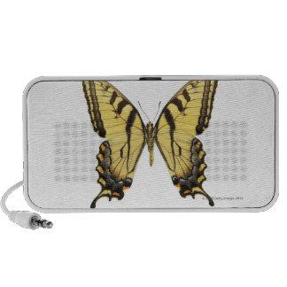 Plan rapproché d'un papillon 2 haut-parleur mobile