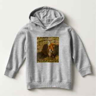 plan rapproché d'un renard sur le sweat - shirt à