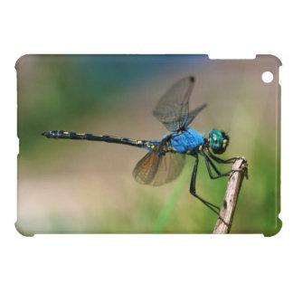 Plan rapproché d'une mouche bleue de dragon sur étui iPad mini
