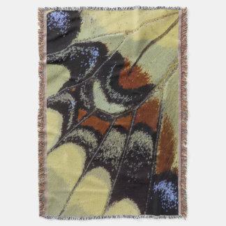 Plan rapproché tropical de papillon couvertures