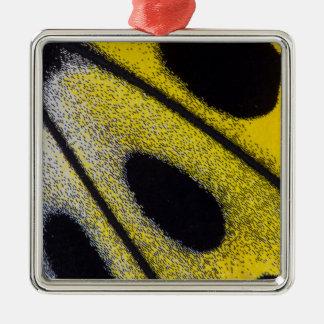 Plan rapproché tropical jaune de papillon ornement carré argenté