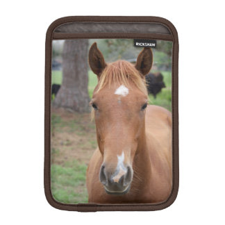 Plan rapproché vigilant de cheval de Brown Housses Pour iPad Mini