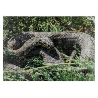 Planche À Découper Conseil décoratif de taille du verre de serpent