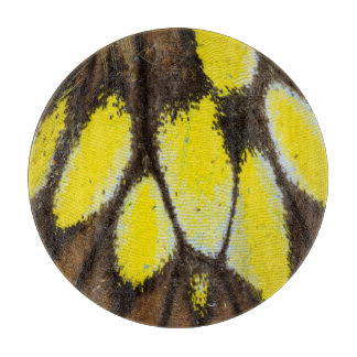 Planche À Découper Motif en gros plan d'aile de papillon tropical