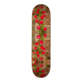 Planche À Roulette les roses s'élèvent sur un mur de briques sur la