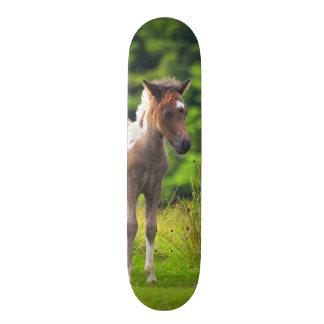 Planche à roulettes debout de poulain de poney de plateau de skate