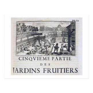 Plantant les arbres fruitiers, de 'Le Parfait Jard Carte Postale