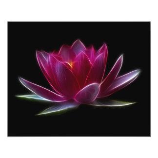 Plante aquatique de fleur de Lotus Prospectus 11,4 Cm X 14,2 Cm