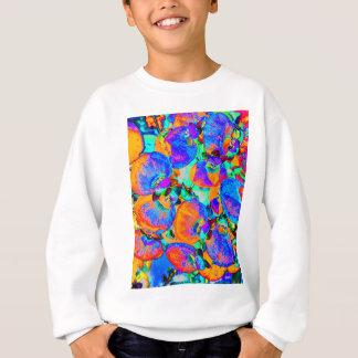 plante solaire sweatshirt