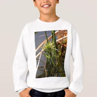 Plantes aquatiques dans l'étang sweatshirt