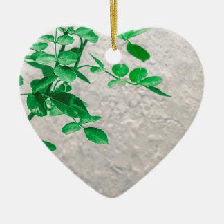 Plantes au-dessus de photo de mur ornement cœur en céramique
