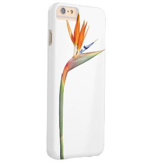 Plantes colorés coque barely there iPhone 6 plus