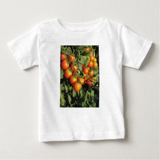 Plantes de tomate s'élevant dans le jardin t-shirt pour bébé