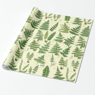 Plantes feuillus verts vintages papier cadeau