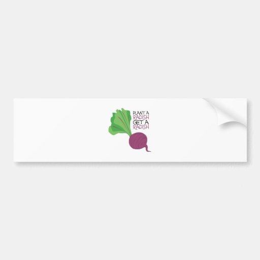 Plantez un radis autocollants pour voiture