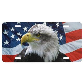 Plaque minéralogique de drapeau américain d'Eagle