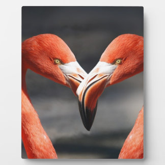 Plaque Photo Amour de Saint-Valentin de coeur de Valentine de